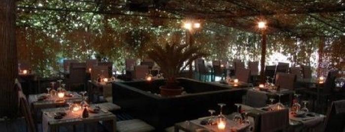 Soho Café Milano is one of Lugares guardados de Alice.