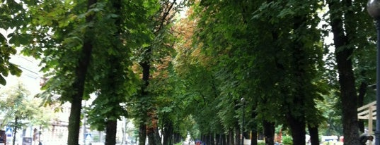 Парк ім. Тараса Шевченка is one of Наш Киев.