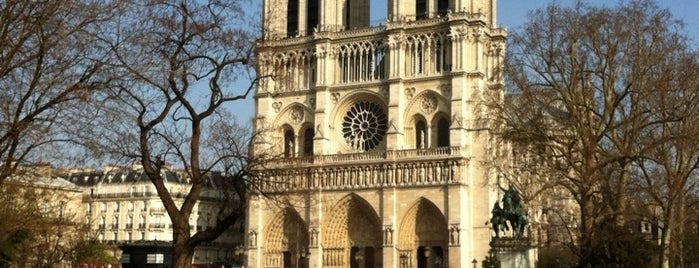 Notre Dame Katedrali is one of Paris.