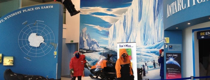 International Antarctic Centre is one of NZ to go.