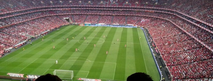Estádio do Sport Lisboa e Benfica is one of Stadiums I've watched sport at.