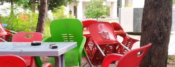 Mersin Üniversitesi Cannet is one of Tempat yang Disukai Gamze.