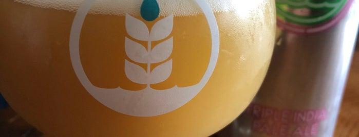 SD Breweries