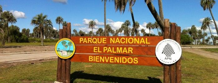 Parque Nacional El Palmar is one of Colón y alrededores.