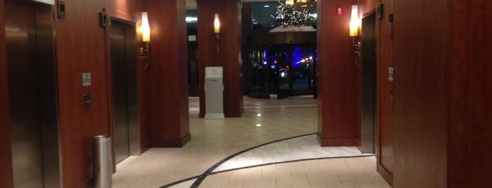 Hilton is one of Ximena'nın Beğendiği Mekanlar.