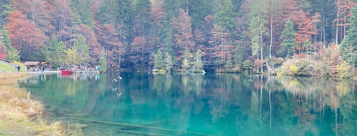 Naturpark Blausee is one of Gezi & Seyahat.