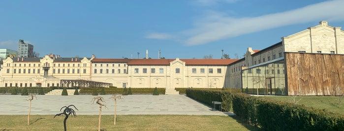 Castel Mimi is one of MDA Chisinau.