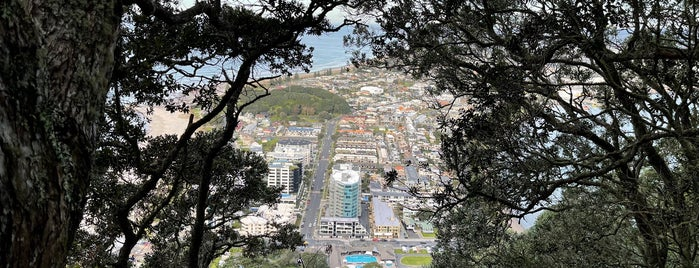 Mount Maunganui Summit is one of The Real Middle Earth 🇳🇿.