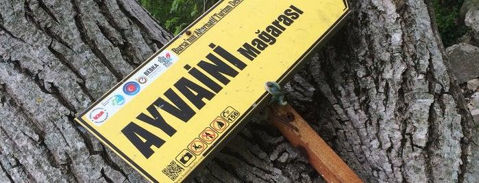 Ayvaini Mağarası is one of Mutlaka gidilmeli!.