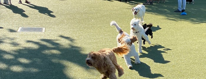 West Hollywood Park Dog Run is one of Lugares favoritos de Lau.