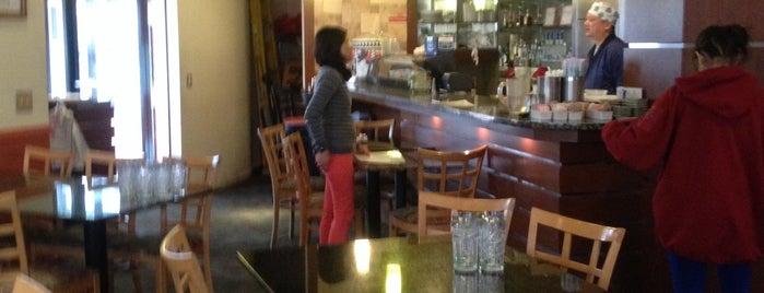 Umami Bistro Is One Of Kosher Restaurants In Baltimore
