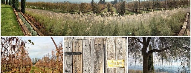 Willamette Valley Wine Country is one of Wineries & Breweries.