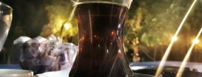 Toki Seyir Cafe is one of Zyn : понравившиеся места.