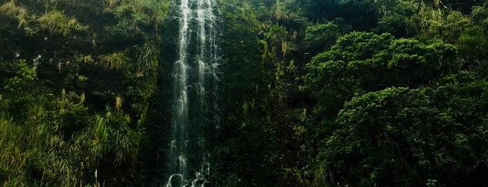 Karekare Waterfall is one of New Zealand 🗺⛰🏔🏞🌄🌅🌇🏙.