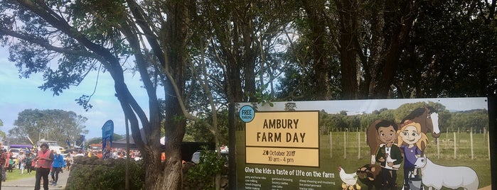 Ambury Regional Park is one of New Zealand (North Island).