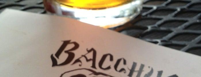 Bacchus Pub is one of Posti che sono piaciuti a Danny.