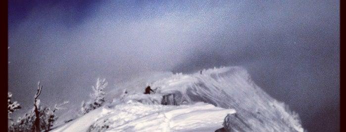 Bridger Bowl is one of Ski Resorts.