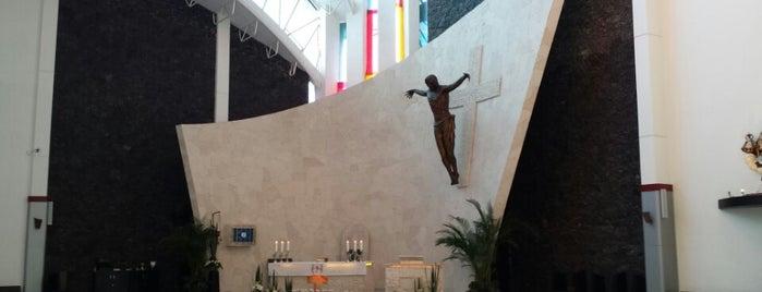Parroquia de la Inmaculada Concepción de Maria is one of Orte, die Jose gefallen.