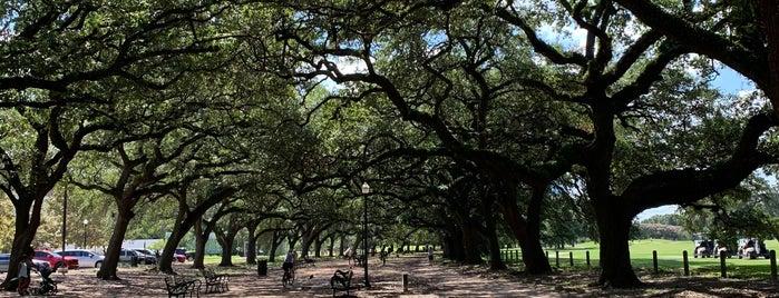 Marvin Taylor Jogging Trail is one of Aptraveler 님이 좋아한 장소.