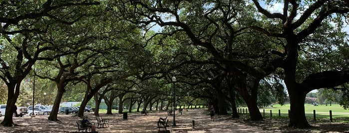 Marvin Taylor Jogging Trail is one of Houston.