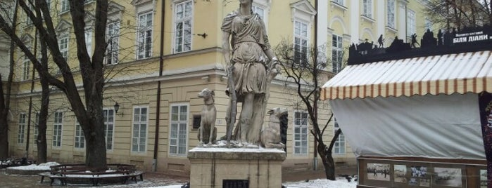 Фонтан Діана / Diana Fountain is one of Lviv.