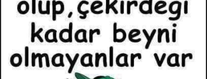 Eryaman 3. Etap is one of Posti salvati di Yasemin Arzu.