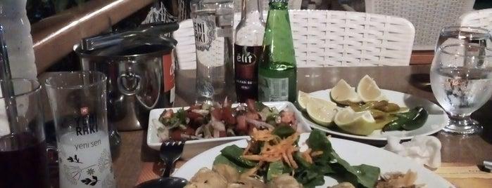 Kayra Balık Gemi Restaurant is one of Volkanさんのお気に入りスポット.