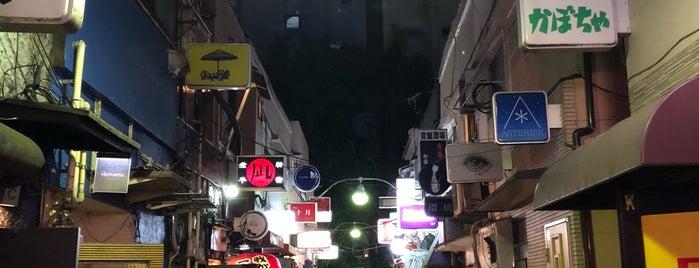 Shinjuku Golden-gai is one of Tokyo.