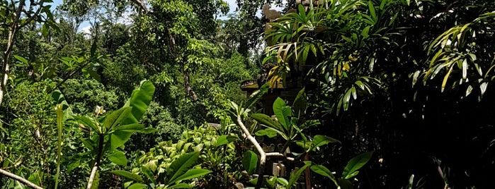 Natura Resort & Spa Ubud is one of Hnmn.