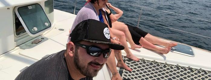Lazy Lizard Sailing is one of Orte, die Todd gefallen.