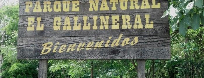 Parque Gallineral is one of Vivir Mejor.