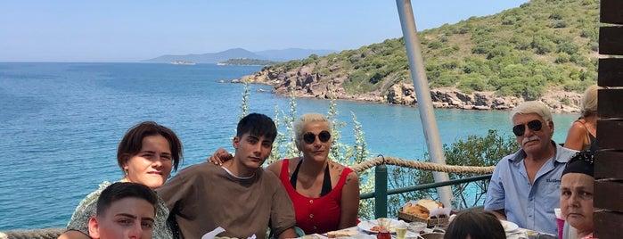 Çook Taze Patisserie is one of Bodrum.