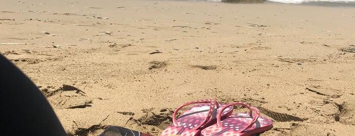 Playa El Raspon is one of Orte, die Roberto gefallen.
