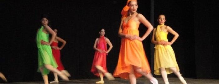 Ballet Independiente De Toluca is one of สถานที่ที่ Mario ถูกใจ.