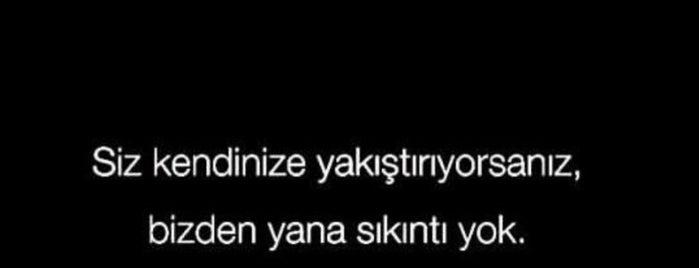 Step Tarz Konutları is one of Birgül'un Beğendiği Mekanlar.
