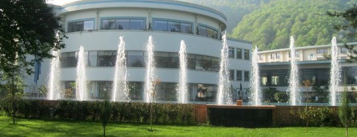 NG Sapanca Havuzu is one of Lugares favoritos de Yasin.