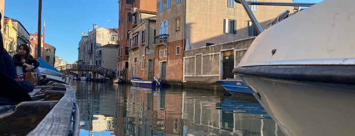 Timon is one of Venice's Must-Visits.
