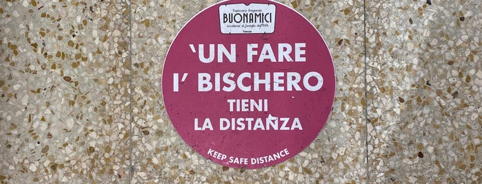 Buonamici is one of Firenze.