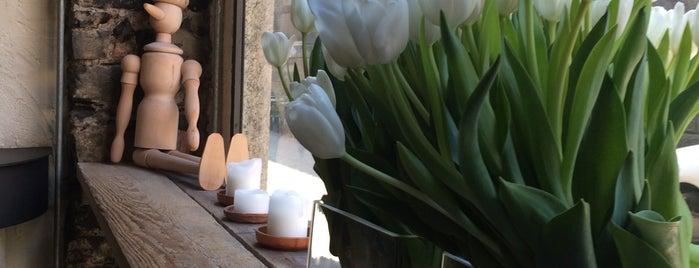 Pane & Tulipani is one of Lake Como.