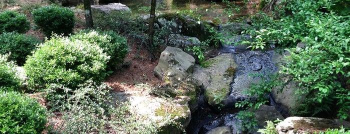 Garvan Woodland Gardens is one of Little Rock Summer 2019.