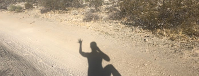 Desert View Conservation Area is one of Twerksgiving.