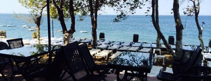 Serander Çamlıbel Cafe Beach Club is one of Orte, die Esra gefallen.