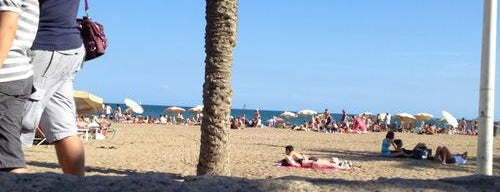 CDLC is one of Barcelona.