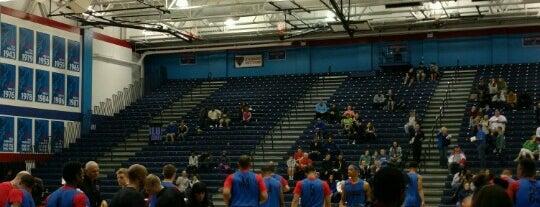 DePaul - Sullivan Athletic Center/McGrath Arena is one of College Basketball Arenas.
