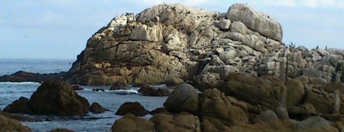 Santuario Natural Lobos Marinos is one of Chile.