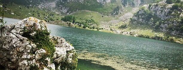 Lago Enol is one of North Spain.