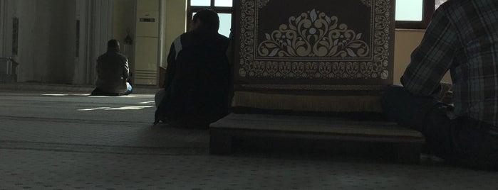 Ravza Sitesi Camii is one of Göktürk.
