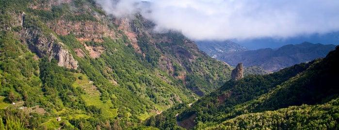 Parque Nacional de Garajonay is one of Locais curtidos por Evgeny.