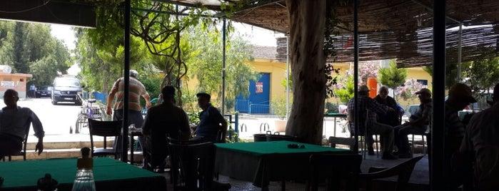 Flamingo Cafe Apo'nun Yeri is one of Karşıyaka.