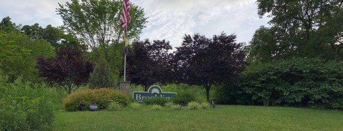 Brookline is one of Lugares favoritos de Julie.
